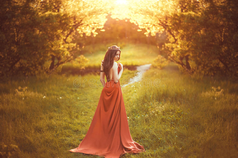 美丽的公主年轻人 库存照片