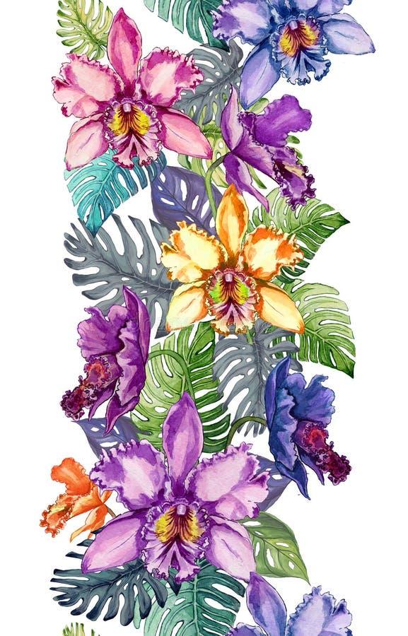 美丽的兰花开花,并且monstera在白色背景离开 无缝的热带花卉样式 诚实 皇族释放例证