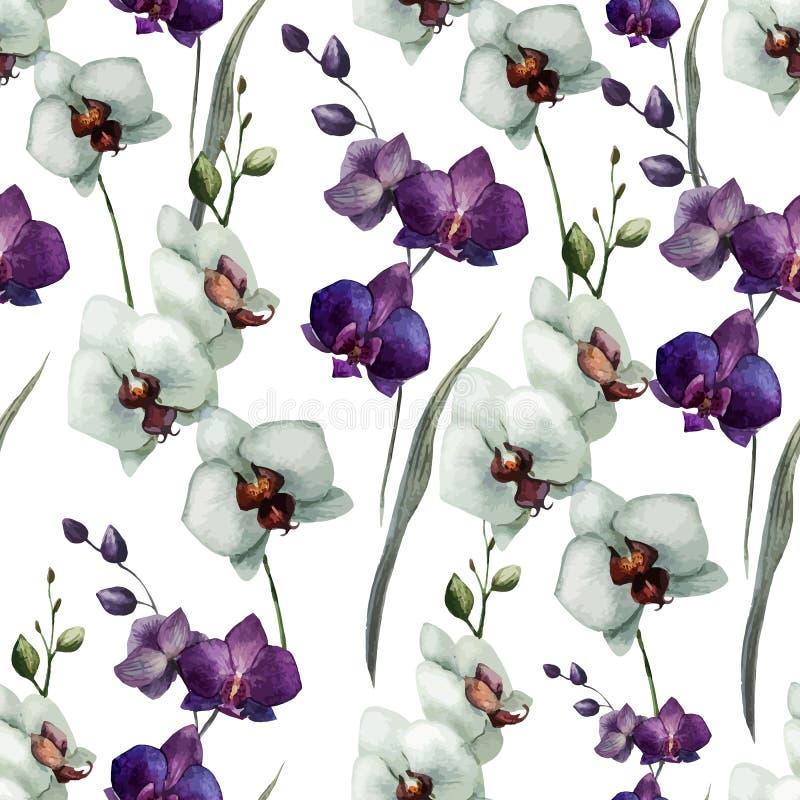 美丽的兰花flower7 向量例证