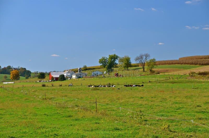 美丽的农场在乡下 库存图片