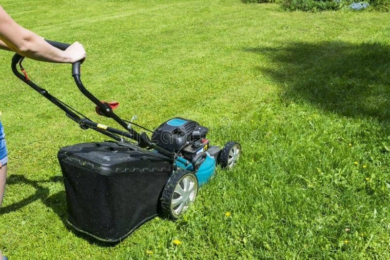 美丽的剪切女孩草坪 E 在绿草的割草机 刈草机草设备 割的花匠关心工作工具 免版税图库摄影