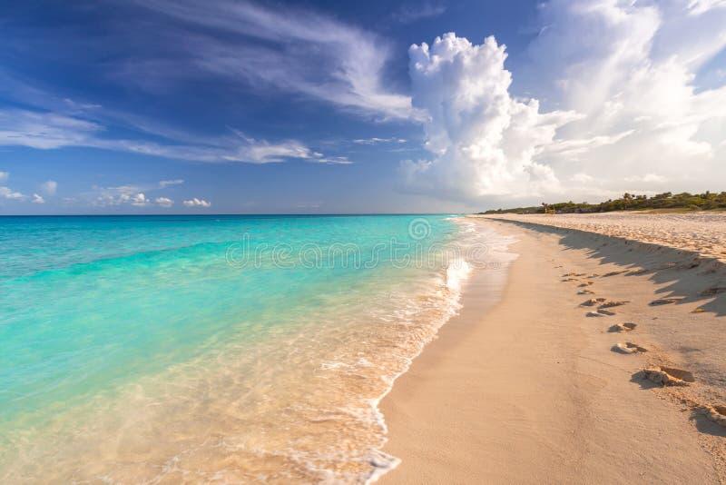 美丽的加勒比海海滩在普拉亚德尔卡曼,墨西哥 免版税图库摄影