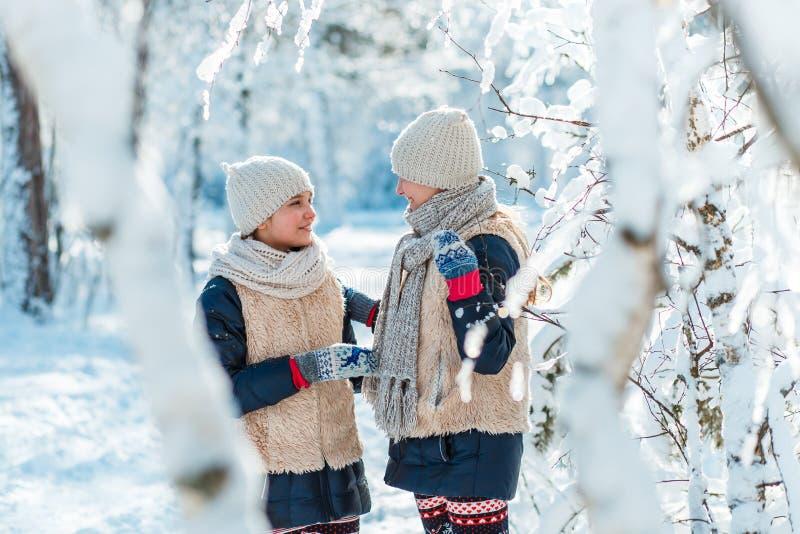 美丽的十几岁的女孩孪生姐妹有乐趣外部在与雪的木头在冬天 友谊,家庭,概念 库存照片