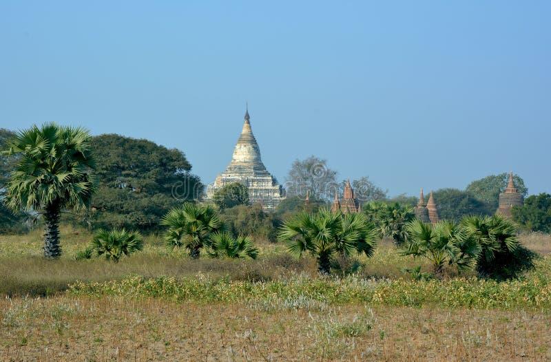 美丽的古老佛教寺庙 bagan缅甸 库存照片