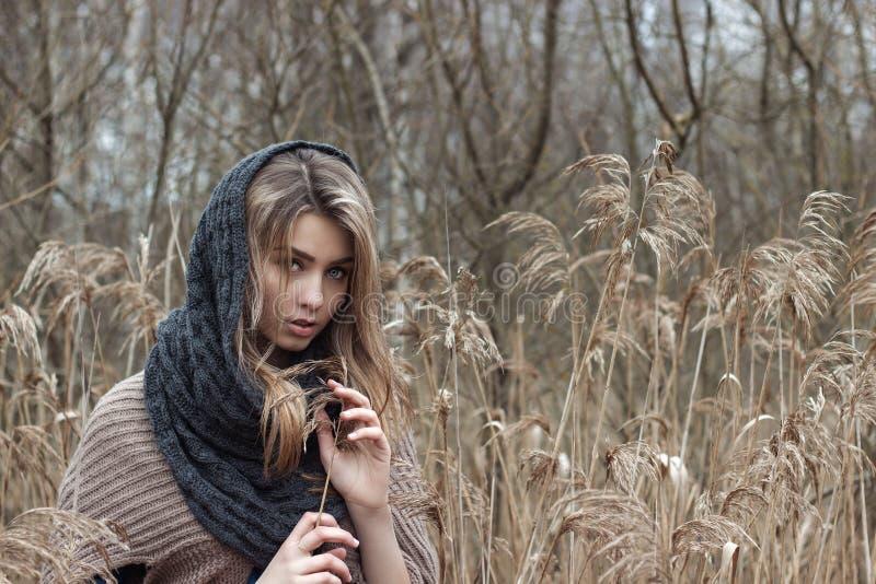 美丽的哀伤的女孩在领域走 在棕色口气的照片 库存照片
