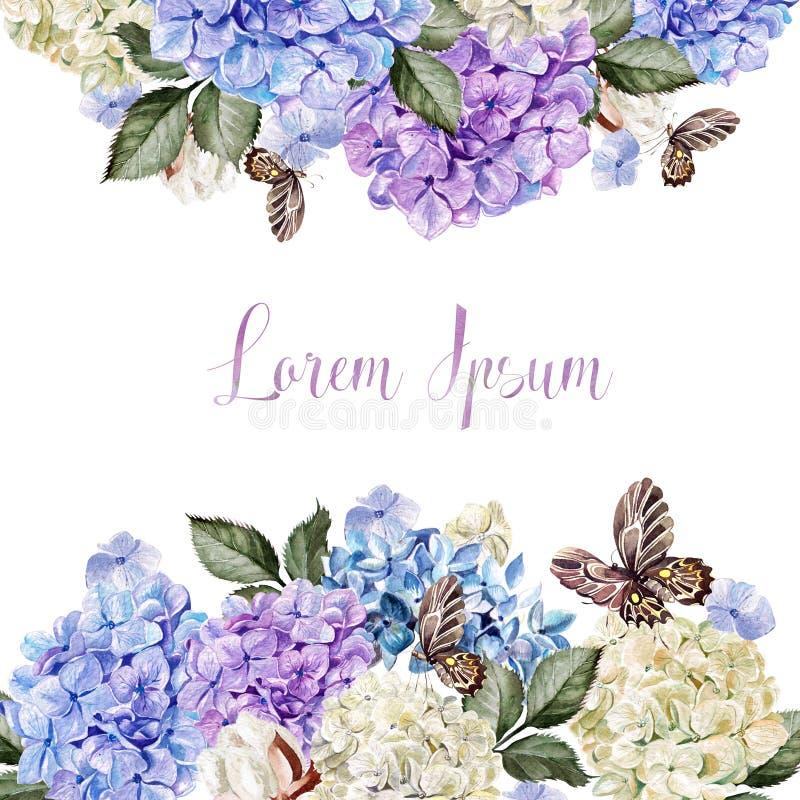 美丽的喜帖、邀请与hudrangea和棉花 向量例证