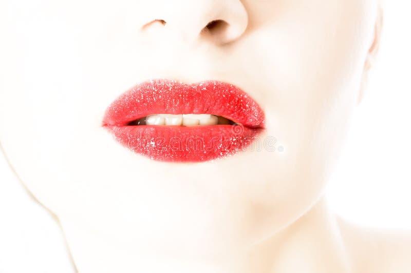 美丽的嘴唇妇女 库存图片