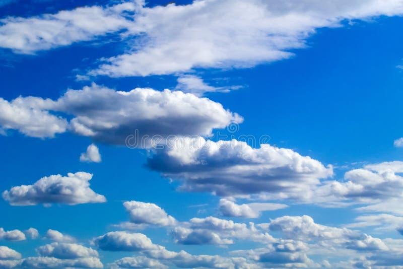 美丽的在天空蔚蓝背景的积云白色云彩  库存照片