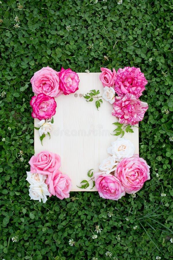 美丽的夏天花和木板在绿草 免版税图库摄影
