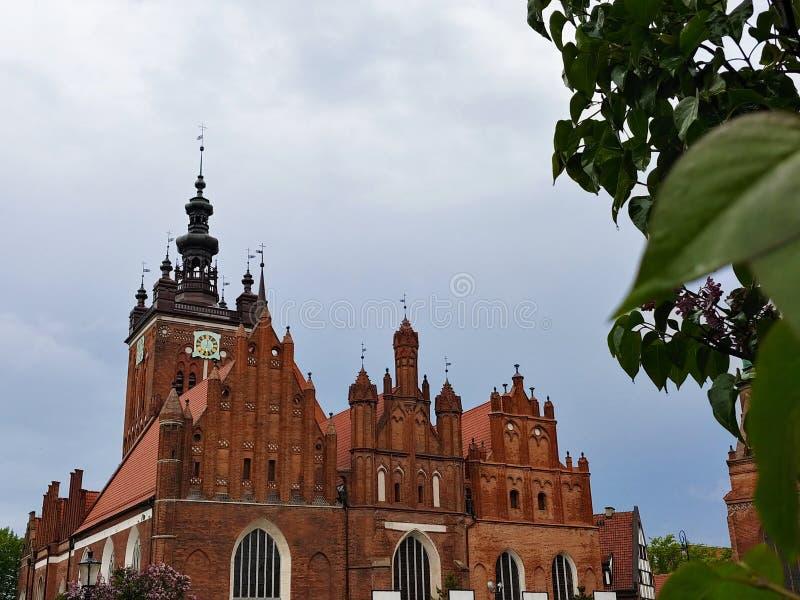 美丽的大教堂在格但斯克的中心 免版税库存照片