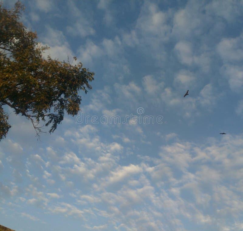 美丽的天空 免版税图库摄影