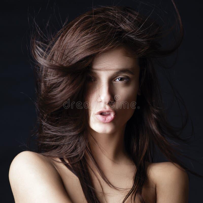 年轻美丽的夫人照片有壮观的头发的 库存图片