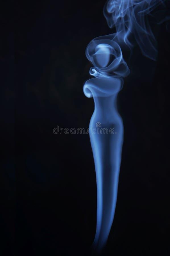 美丽的夫人的图象由发烟制成 免版税库存照片