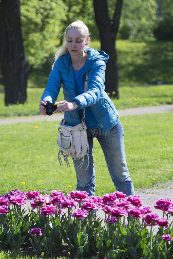 美丽的女人拍下春花郁金香的花床 免版税图库摄影