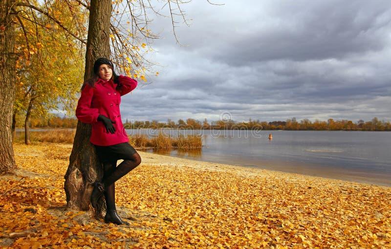 美丽的女孩倾斜的结构树年轻人 免版税图库摄影
