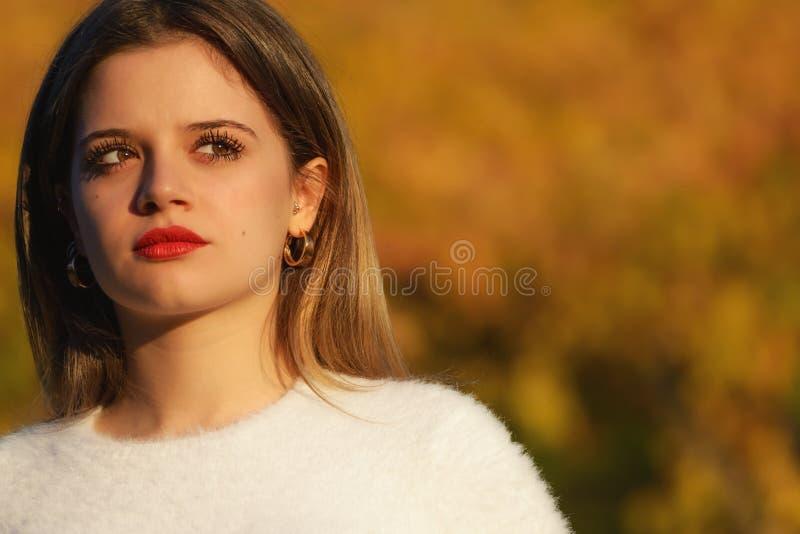 美丽的女孩画象  图库摄影