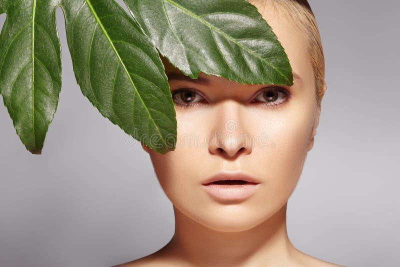 美丽的妇女应用有机化妆用品 温泉健康 与干净的皮肤的设计 医疗保健 与叶子的图片 免版税库存照片