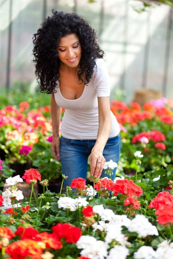 美丽的妇女自温室 库存图片