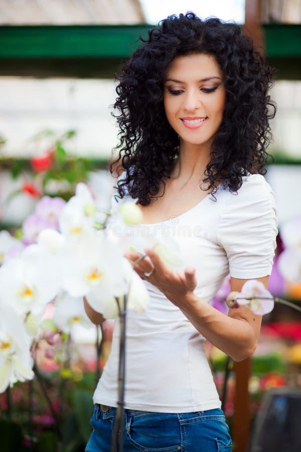 美丽的妇女自温室 库存照片