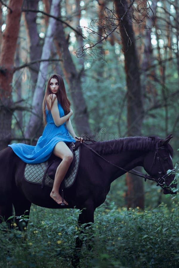 美丽的妇女骑乘马在森林里 库存图片