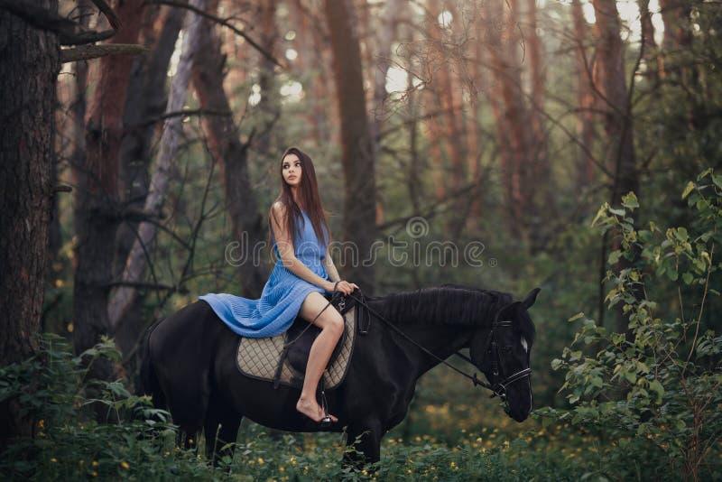 美丽的妇女骑乘马在森林里 免版税库存照片