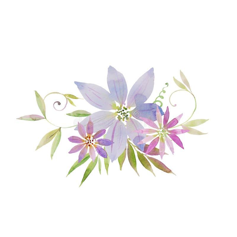 美丽的嫩紫色铁线莲属花花束与卷曲射击,叶子的 画开花的河结构树水彩绕的银行 库存例证