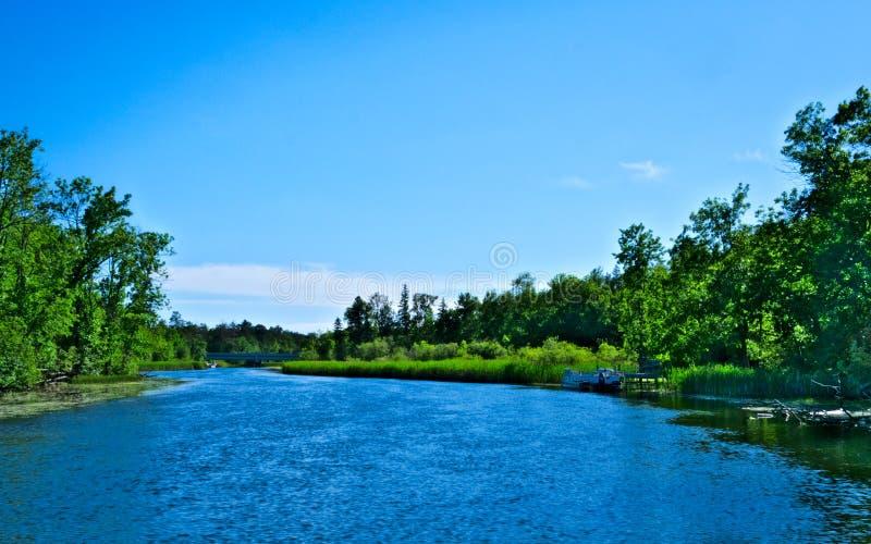 美丽的密西西比河在Bemidji明尼苏达流动北部 免版税库存照片