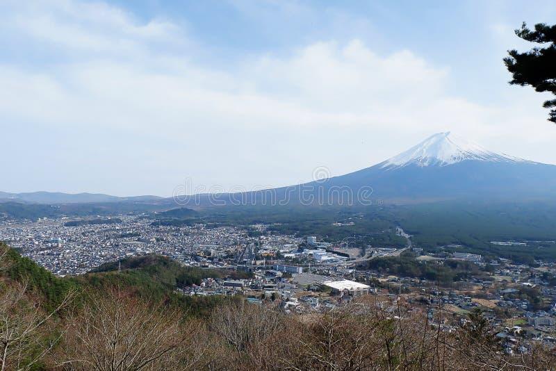 美丽的富士山接近的上面与雪盖的在上面与可能和在日本和松树的樱花 免版税库存照片