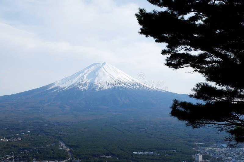 美丽的富士山接近的上面与雪盖的在上面与在日本可能和杉木 库存图片