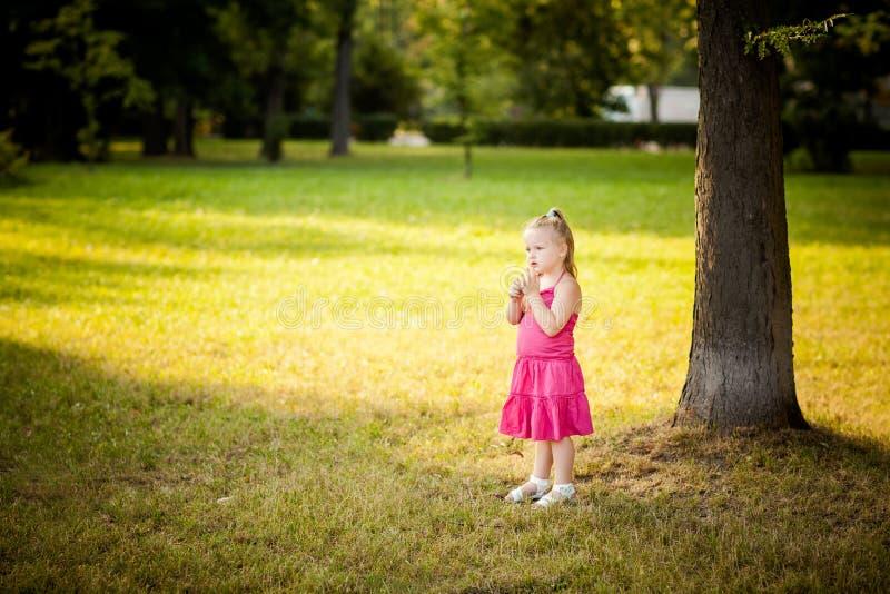 美丽的小女孩在公园 库存图片