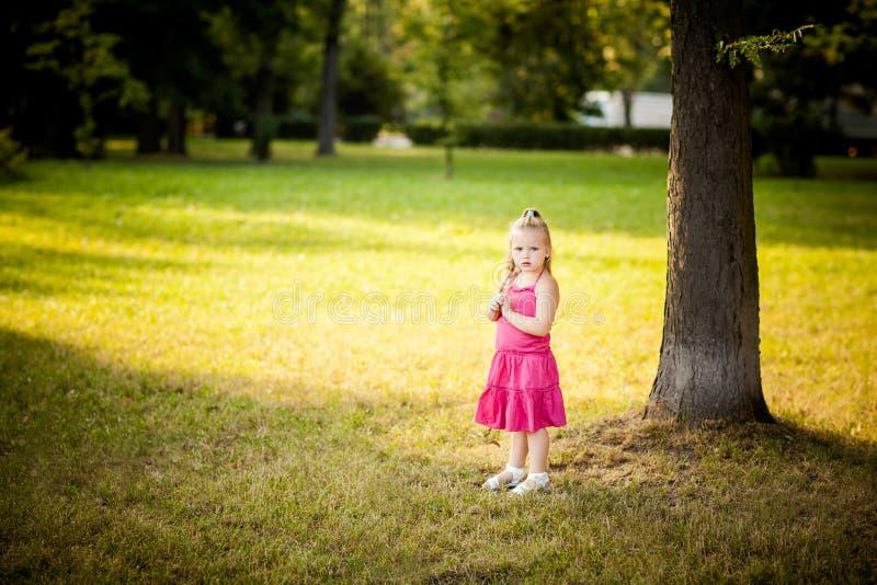 美丽的小女孩在公园 库存照片