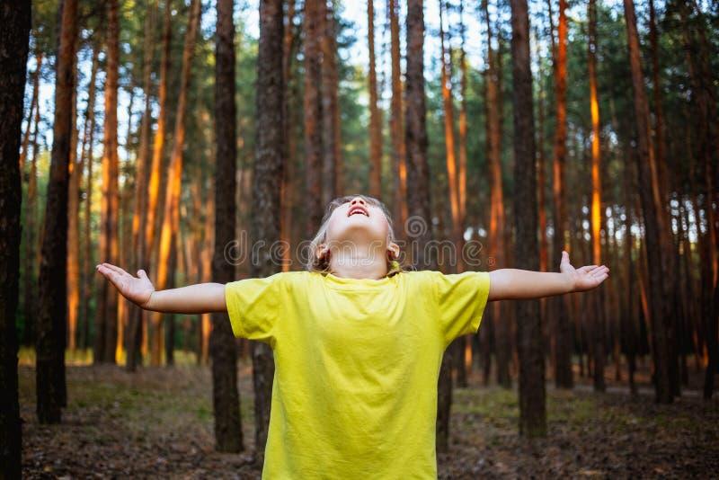 美丽的小女孩在杉木森林用手享受自然 库存照片