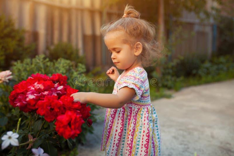美丽的小女孩画象有玫瑰的开花 图库摄影