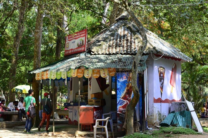 美丽的小屋在公园 免版税库存图片