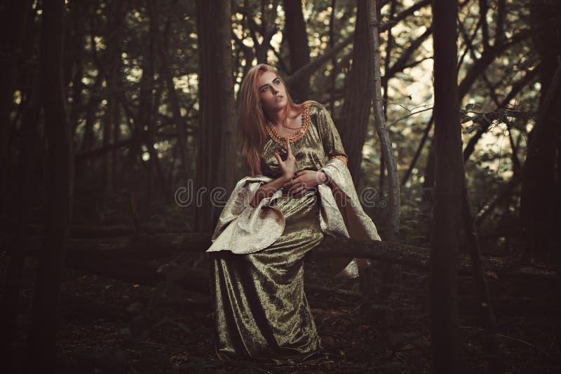 美丽的小精灵似的夫人在不可思议的森林里 图库摄影