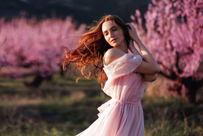 美丽的少女在开花的桃红色树下 库存图片