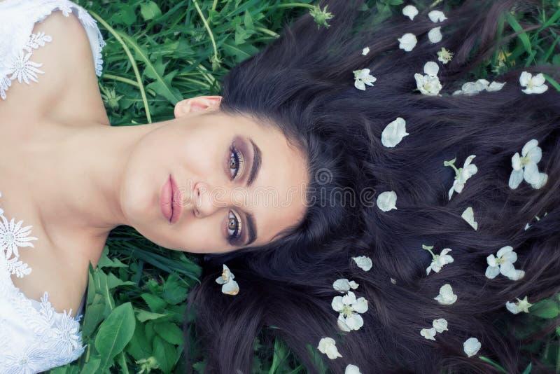 美丽的少女在白花中的清洁说谎 ?? 春黄菊 免版税库存照片