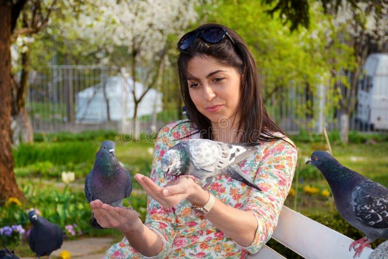 美丽的少妇哺养的鸽子在春天庭院里 库存图片