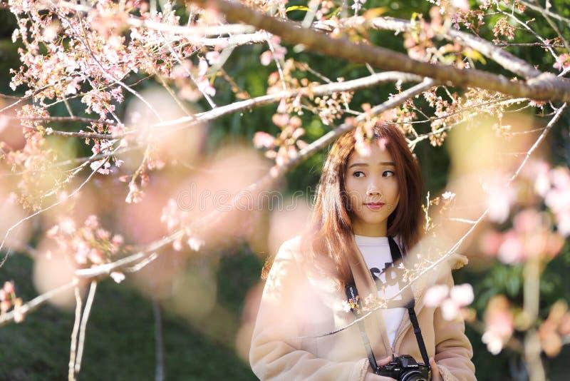 美丽的少妇拍与开花的樱花佐仓花的照片 免版税库存图片