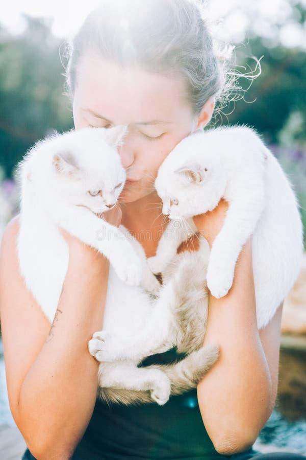 美丽的少妇拿着在她的胳膊的两只白色猫并且亲吻他们在阳光下轻 库存图片