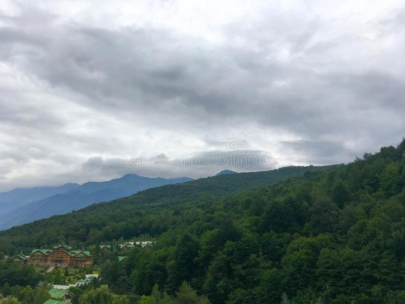 美丽的山在森林里 免版税库存图片