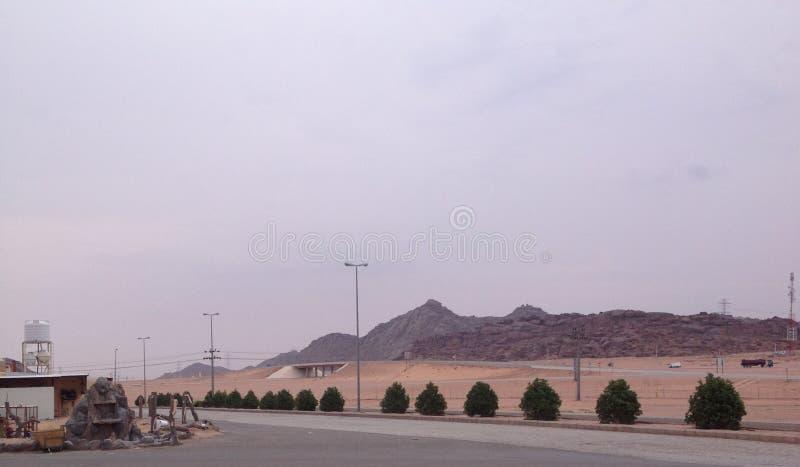 美丽的山景城在沙特阿拉伯 免版税图库摄影