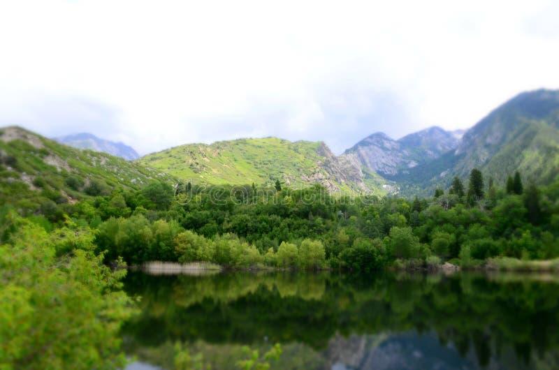 美丽的山湖在春天 免版税库存照片