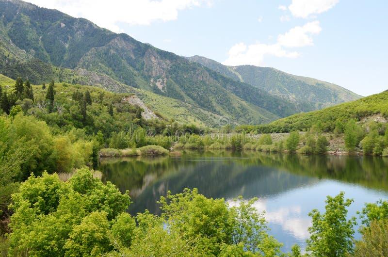 美丽的山湖在春天 库存图片
