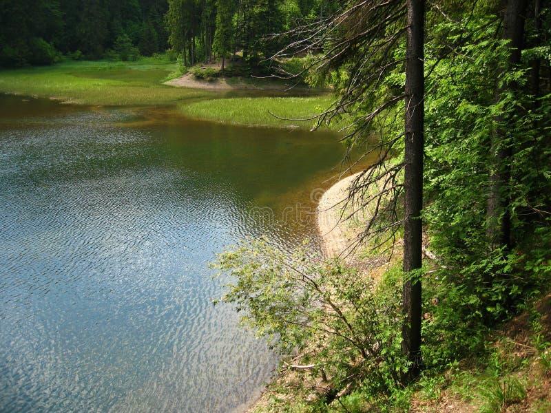美丽的山湖用清楚的水 免版税库存照片