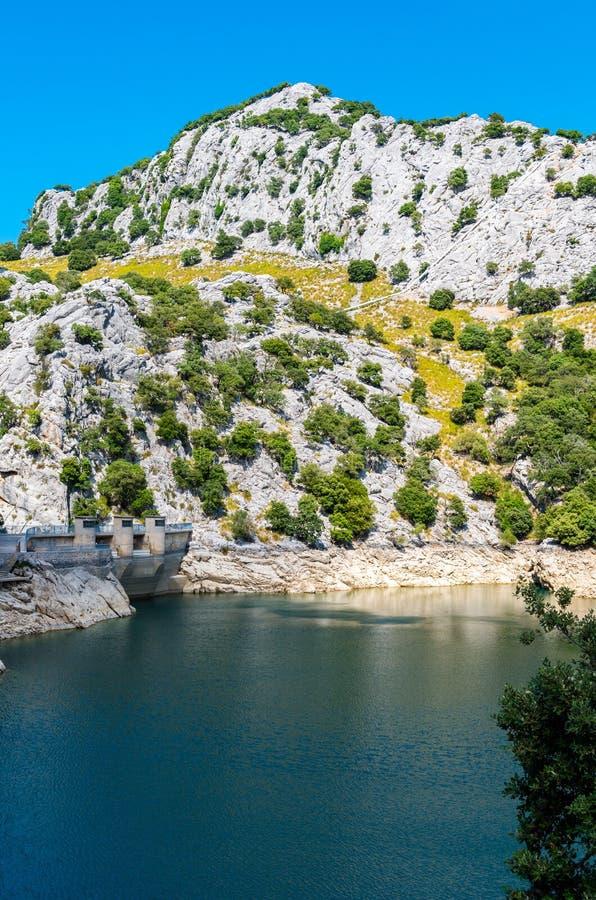 美丽的山湖Panta de Gorg Blau,马略卡,西班牙 免版税库存图片