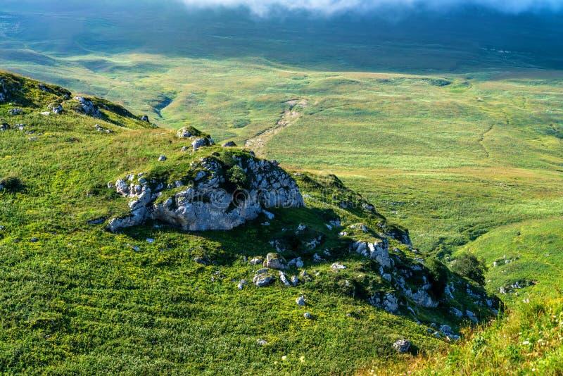 美丽的山草甸 库存图片