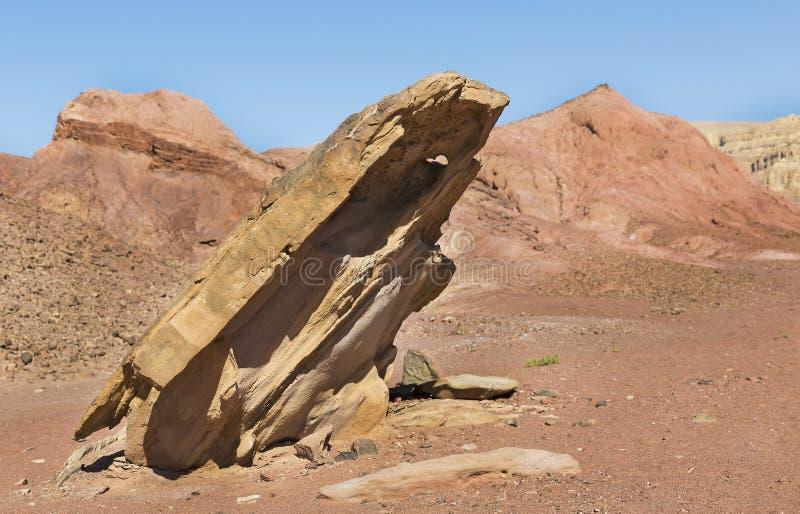 美丽的岩石在原野 库存图片