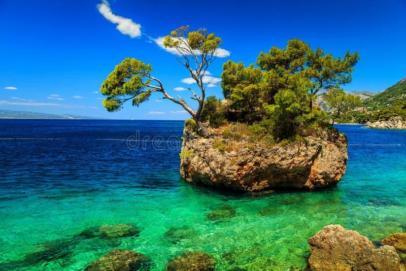 美丽的岩石海岛, Brela,马卡尔斯卡里维埃拉,达尔马提亚,克罗地亚,欧洲 库存图片