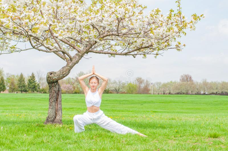 美丽的年轻女人实践瑜伽靠近开花树在公园 免版税库存图片